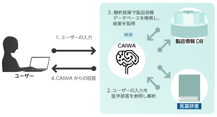 CAIWA Service for Medical概要