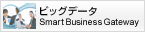ビッグデータ Smart Business Gateway